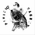 Alter rock zasedba Pixies je po devetih letih izdala novo pesem Bagboy. Četudi je nekaj tednov nazaj basistka Kim Deal zapustila band (zamenjava na turneji bo Kim Shattuck), zasedba nadaljuje svojo pot.